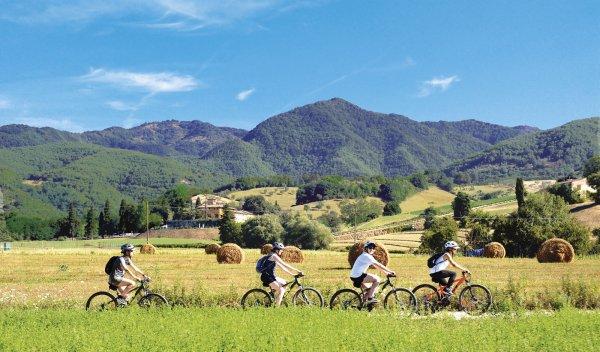 COUNTRYSIDE BIKE TOUR AND SAFFRON TASTING