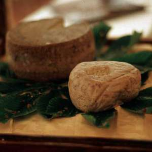 Caprino cheese