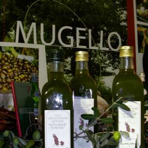 Bottles of Mugello extra virgin olive oil
