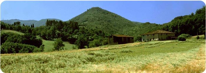 cover-natura
